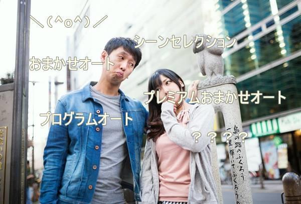 _shared_img_thumb_ikebukuro-fukurou120140921152438_TP_V