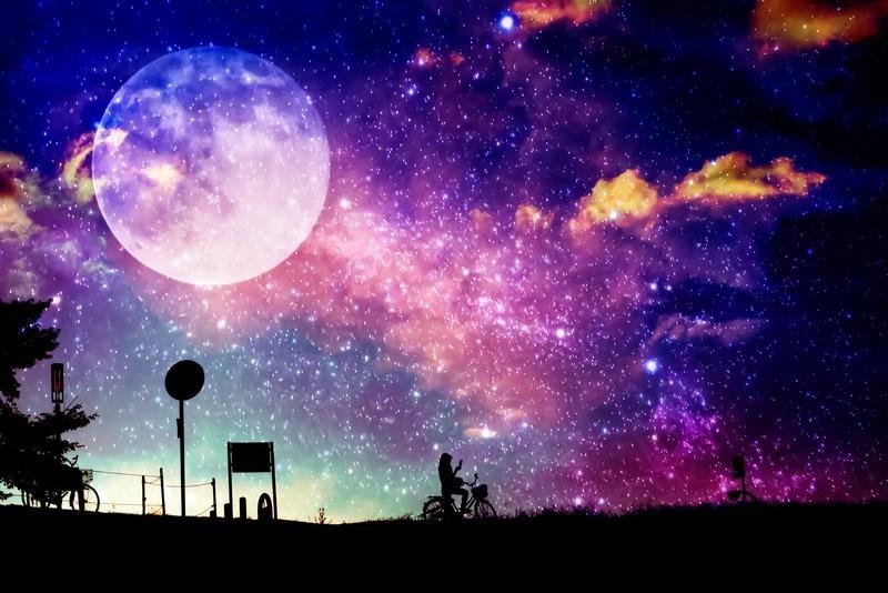 moonbuy
